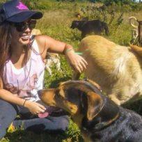 ¡Un estrés menos! Joven cuida perritos para evitarles soledad