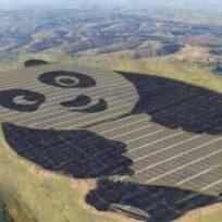 china-construyo-una-planta-de-energia-solar-con-forma-de-oso-panda