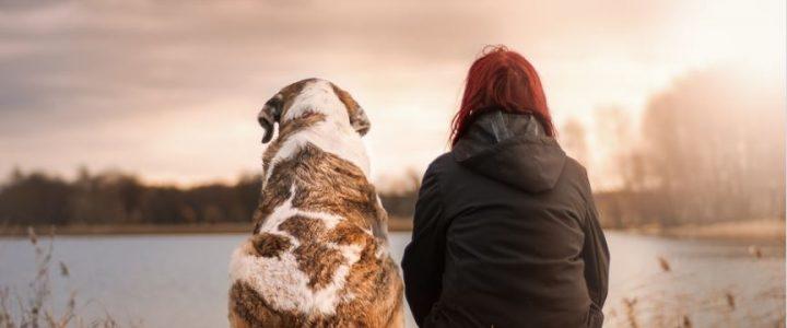 segun-estudio-las-mujeres-duermen-mejor-con-un-perro-que-con-su-pareja