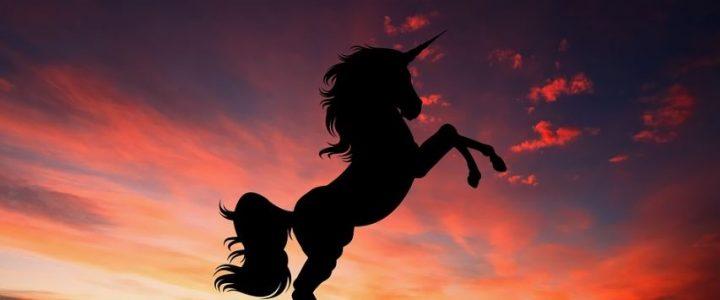 asi-eran-los-verdaderos-unicornios