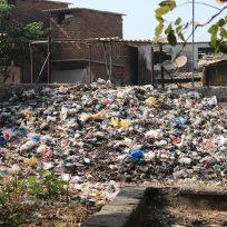 reto-viral-moviliza-miles-de-usuarios-recoger-basura