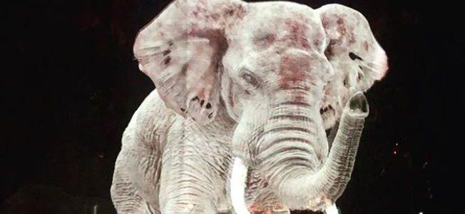 circo-usa-hologramas-para-defender-animales-del-maltrato