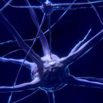 la-lista-de-actividades-que-afectan-nuestro-cerebro