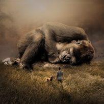 Animales que están en vía de extinción