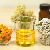 Productos naturales utilizados para la cosmética