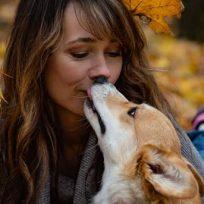 cuidado-besar-tu-perro-en-la-boca-podria-generar-cancer-de-estomago