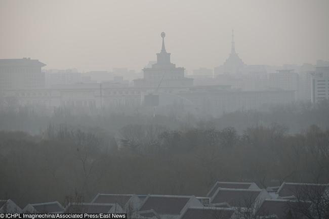 En Imágenes: Así va el planeta en materia de contaminación ambiental - Imagen 2