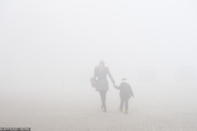 En Imágenes: Así va el planeta en materia de contaminación ambiental - Imagen 11