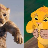 En video: mono 'simuló' una de las escenas de 'El Rey León'