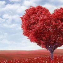 Algunas curiosidades sobre San Valentín que probablemente desconocías