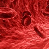 ¿Cómo fortalecer el sistema inmunológico para enfrentar el coronavirus?