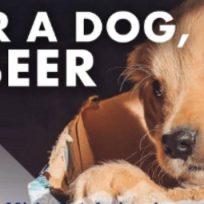 """""""Adopta un perrito y recibe 3 meses de cerveza gratis"""", esta es la iniciativa de una cervecería en cuarentena"""