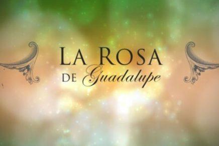 La Rosa de Guadalupe presenta nuevos capítulos inspirados en plataformas digitales